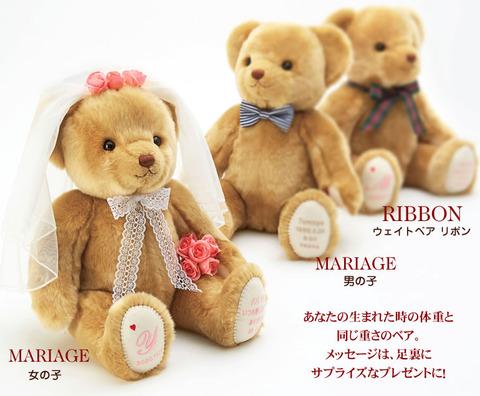 bear_ribbon_02