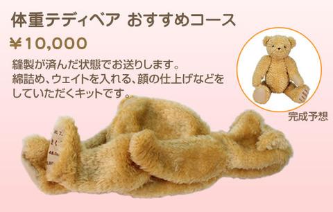 teddy_course2