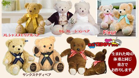 cat_bear02