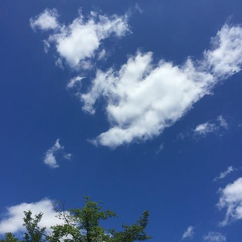 『あいうべ〜』運動と基礎単音トレーニング