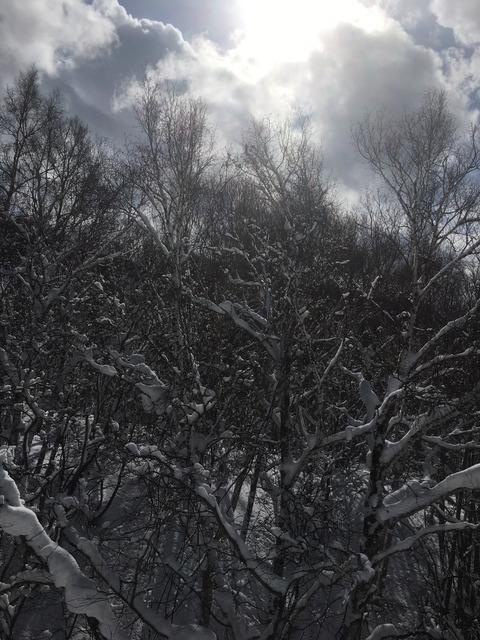 スキースノボ旅行写真_33