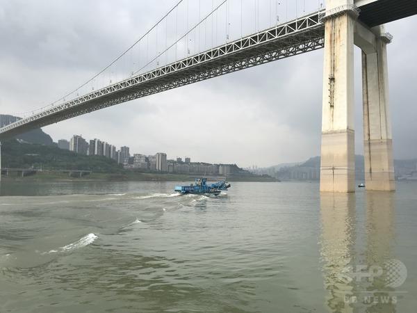 三峡ダム漂流物の「回収王」が見た長江生態環境
