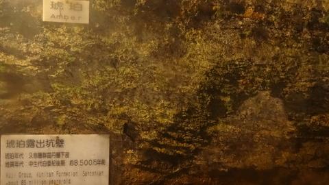 DSC02369
