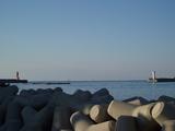 城ヶ島バス停から見える海