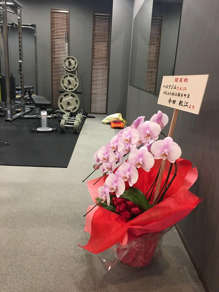 Hulk's Gym Neo 本日オープン!