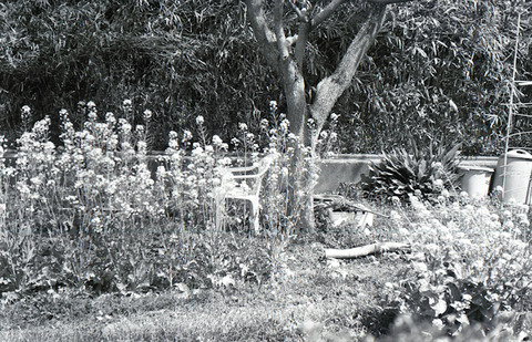 img190-26