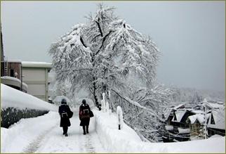 新潟に赴任してから嫁が鬱になった。「雪ばっかり」「寒い」「一日じゅう雪かきばっかり。もういや」北海道育ちの俺からすると可愛いもんなんだが…
