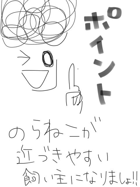 IMG_6398