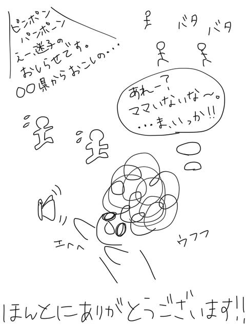 IMG_8931