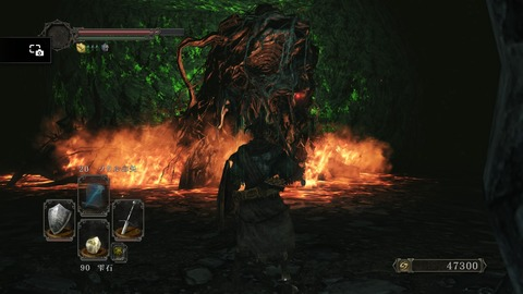 DARK SOULS Ⅱ SCHOLAR OF THE FIRST SIN_20150616194952