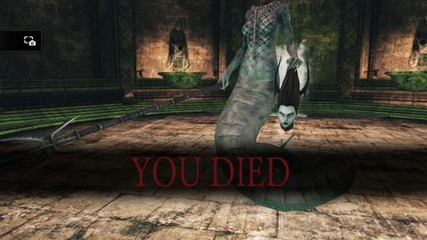 DARK SOULS Ⅱ SCHOLAR OF THE FIRST SIN_20150613151945