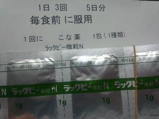 13内科薬1整腸剤