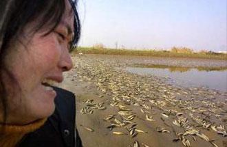 中国の環境破壊2