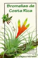 コスタリカのブロメリア