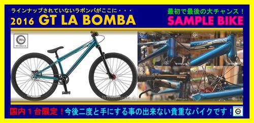 GT_LABOMBA_SAMPLE