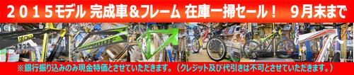 2015_sale