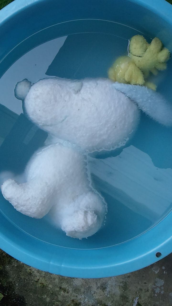 washed snoopy