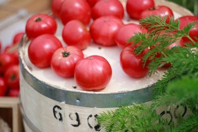0615トマト