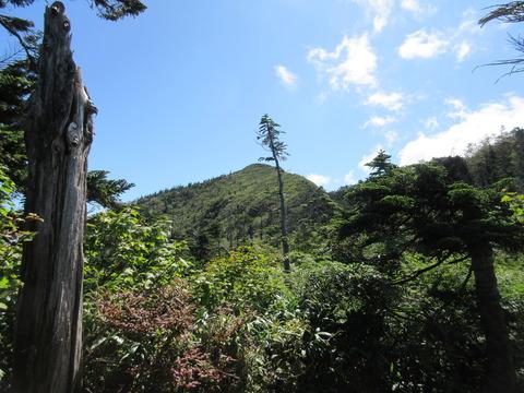 IMG_3768武尊山山頂が見える