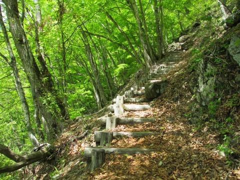 IMG_2677新緑の櫛形山コース