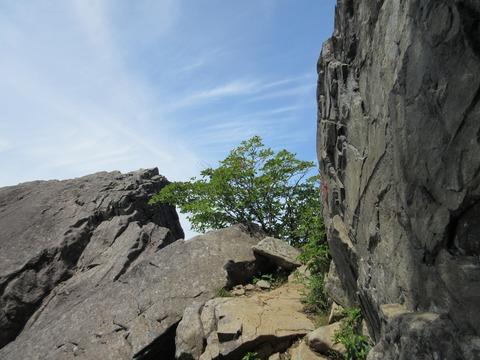 IMG_0553ここを登る