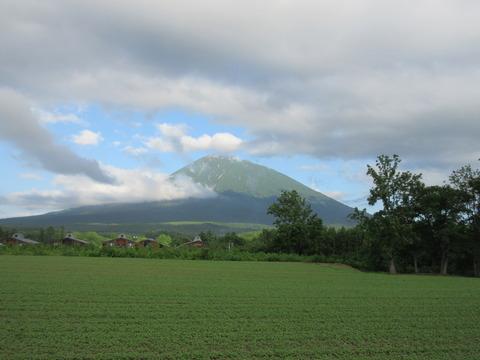 IMG_5953倶知安町から見る羊蹄山