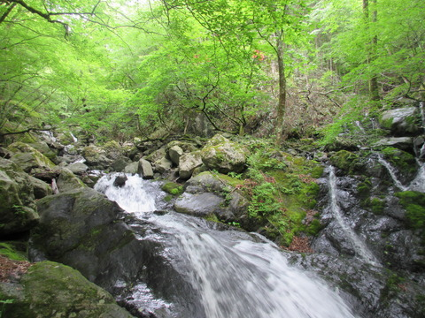 IMG_1875沢沿いの登山道