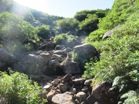 IMG_2233分岐から十勝岳への登山道