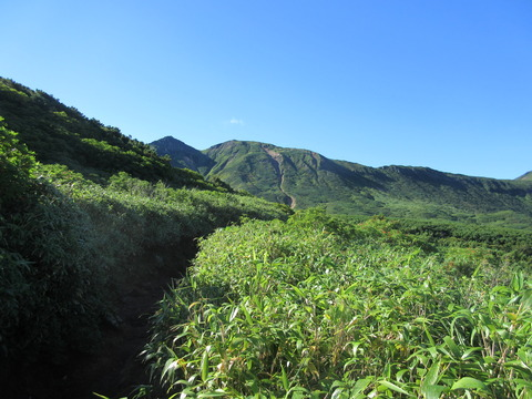 IMG_2231富良野岳