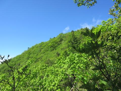 IMG_3174釈迦ヶ岳