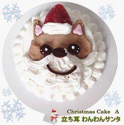 食べるのがもったいない!【ワンちゃん用クリスマスケーキ】ご注文承り中!