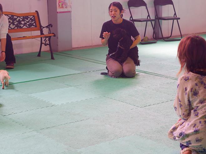 青山先生による毎月恒例『ワンちゃんのしつけ教室』射水店で開催!