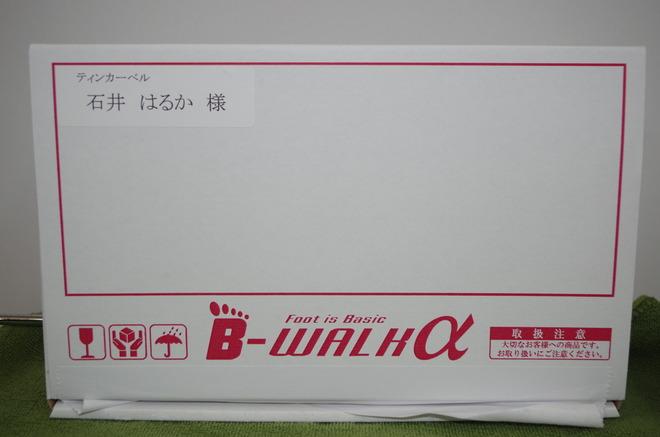 IMGP3453