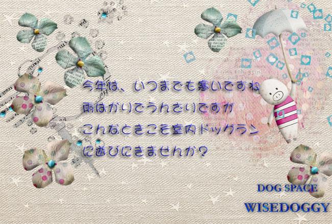 087f044e.jpg