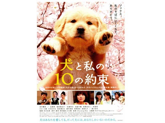 犬の十戒2