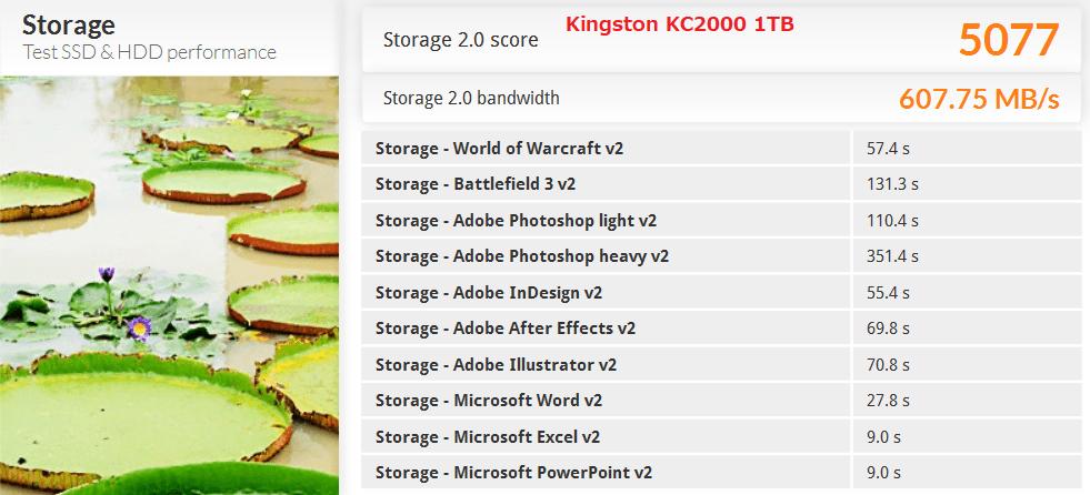 Kingston KC2000 1TB_PCM8
