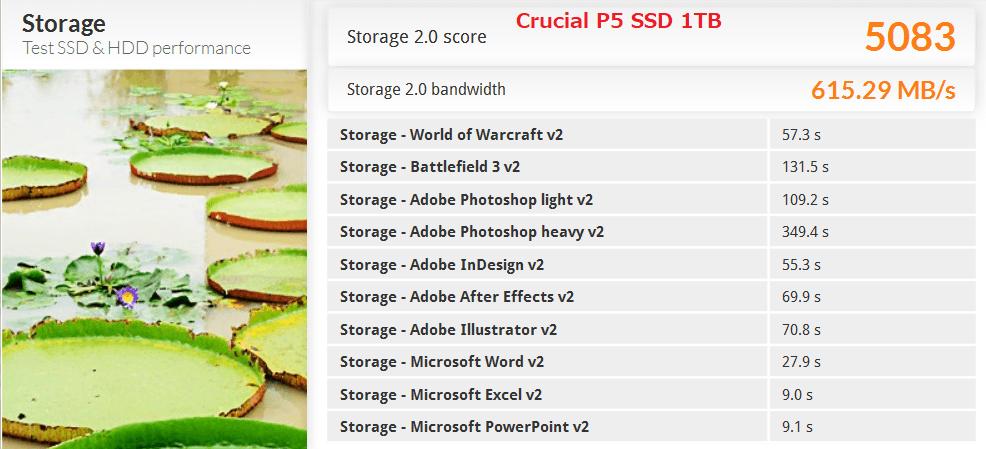 Crucial P5 SSD 1TB_PCM8