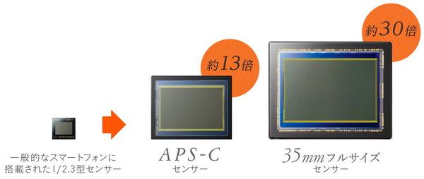 Full-Size-Image-Sensor