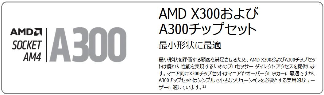 AMD A300