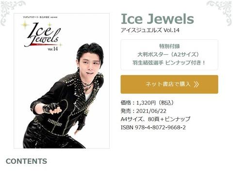 Ice Jewels 14  1
