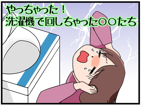 やっちゃった!洗濯機で回しちゃった○○たち①