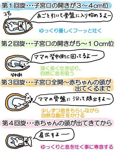 sofuro2-1.jpg