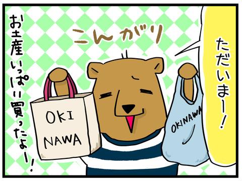 沖縄から帰宅1