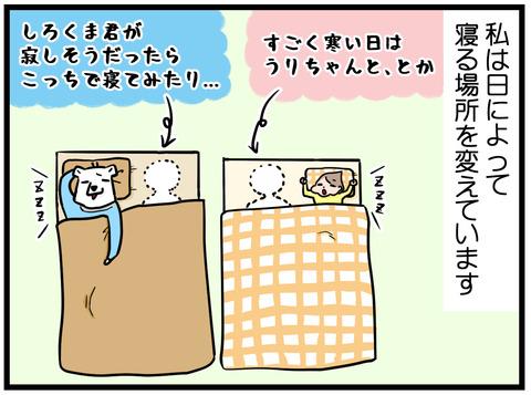 寝る場所1