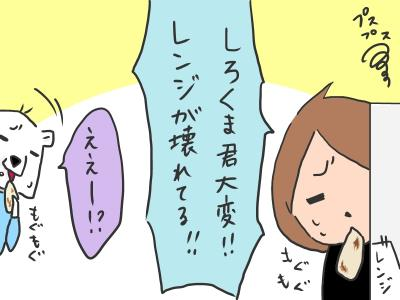 curry2-3.jpg
