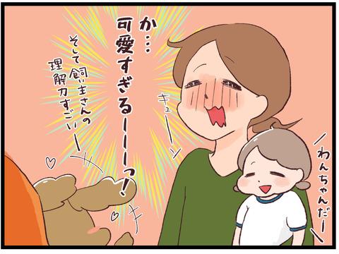 わんちゃん可愛い4