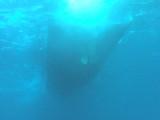水面下からボート