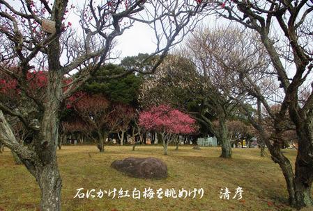 004_blog