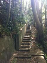中ノ郷やつぼ階段