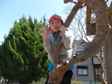 若松台公園_180331_0035